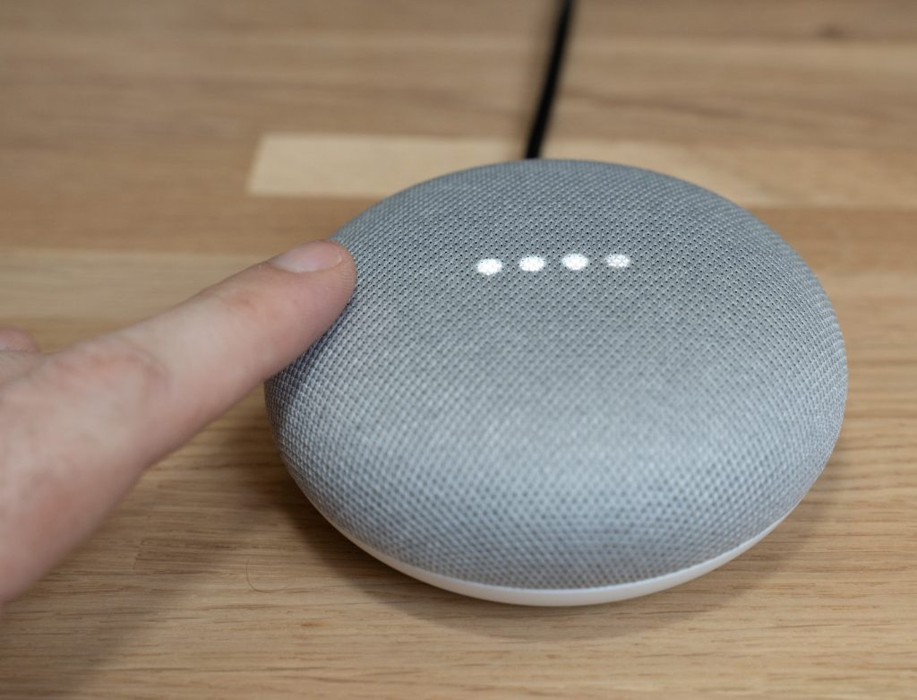 amazon echo o google home